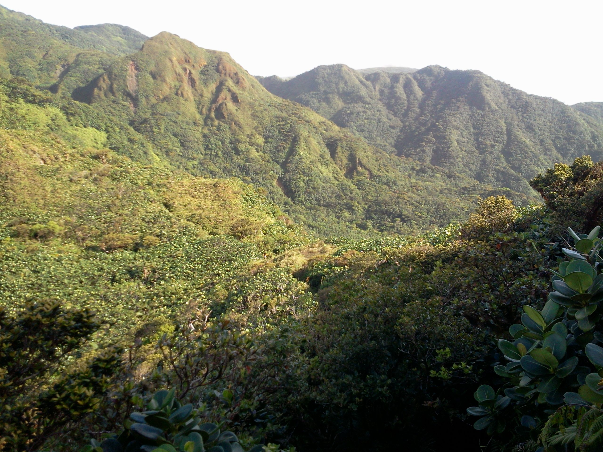 Les hauteurs for Distri center la montagne